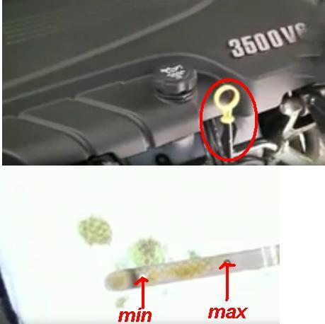 Check Impala Chevrolet Impala oil level